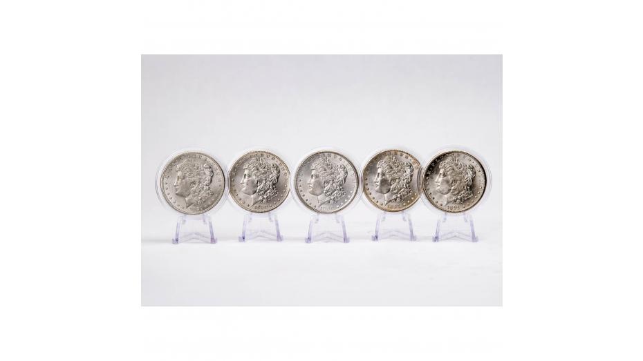 Set of 1-5 Morgan Dollars Brilliant Uncirculated